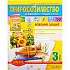 Робочий зошит «Природознавство» 3 клас (укр. мова)