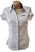 Блузка женская короткий рукав