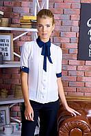 Классическая Белая Блуза с Синим Бантом Короткий Рукав р. XS-L