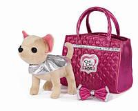 Собачка Чихуахуа Модный гламур Chi Chi Love Simba