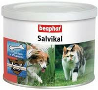 Salvikal Beaphar - Пищевая добавка  для собак и кошек 250 г