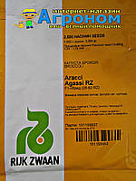 Семена капусты брокколи Агасси F1, 2500 семян RZ (калиброванные)