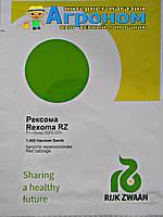 Семена капусты Рексома F1(калиброванные), 1000 семян , Rijk Zwaan (Рийк Цваан)