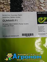 Семена огурца Гуннар F1, 500 семян,Enza Zaden (Энза Заден), Голландия