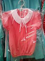 Элегантная цветная блуза с белым воротником для девочек в ассортименте