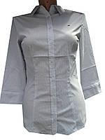 Блузка женская 3/4 рукав, принт