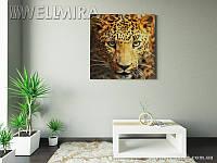 Модульная картина Леопард на ткани 100х100 см, арт. FA-10 001464