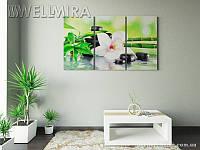 Модульная картина Фотокартина орхидея и солнце 2 на ткани 90х150 см, арт. FA-10 001483