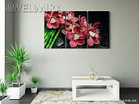 Модульная картина Фотокартина Фантазия на ткани 90х150 см, арт. FA-10 001487