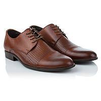 Мужские туфли коричневого цвета Tapi (стильные, открытый тип шнуровки, модные, удобные, практичные)