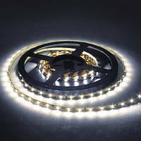 Светодиодная лента LS606/ SANAN LED-RL 60SMD(5050)/m 14,4W/m 12V 5m*8*0.22mm белый, Feron
