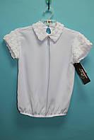 Школьная блузка GIES белые розочки на воротнике и рукавах