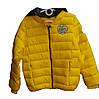 Детская куртка на девочку (3-7 лет). Осень