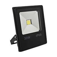 Светодиодный прожектор Feron LL-838 30W 6400K
