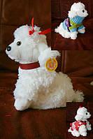 Собака (музыка) в одежде Сонечко 93460