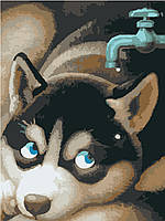 Картина по номерам на холсте без коробки Идейка Щенок хаски (KHO2444) 30 х 40 см
