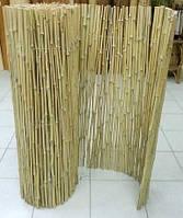 Бамбуковый забор, 1,5х6м