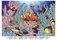 Схема для вышивания бисером Рыбки ЮМА 317