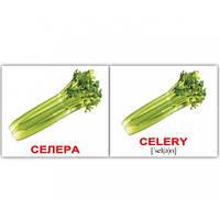 Комплект карточек - Овощи Vegetables МИНИ 40