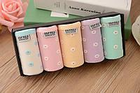 Набор женских трусиков из натуральной ткани(5 шт в упаковке)