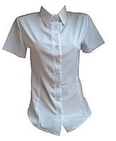 Рубашка женская короткий рукав