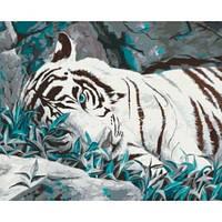 """Картина по номерам """"Белый тигр"""" 40х50 см. Идейка. КН2453"""
