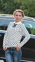 Женская кофта блузка с белым воротником горошек белая