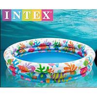 Бассейн детский надувной Тропические рыбки Intex 59431 Киев