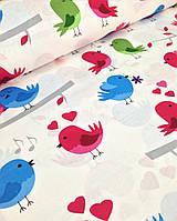 Хлопковая ткань польская цветные птички
