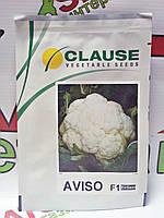 Семена капусты цветной Авизо F1, 1000 семян Clause
