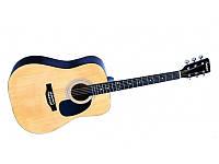 Акустическая гитара FALCON FG100N