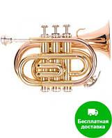 Труба ODYSSEY PREMIERE OCR100P 'Bb', «карманная труба»