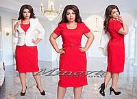 Женский жаккардовый костюм платье и пиджак Лучи (размеры 50-56)
