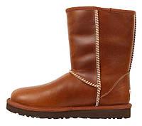 Мужские зимние сапоги UGG Australia Classic Short (угги австралия) кожаные коричневые