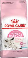ROYAL CANIN (РОЯЛ КАНИН) Mother & Babycat 10КГ (ДЛЯ КОТЯТ ОТ 1 ДО 4 МЕСЯЦЕВ)