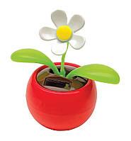 Танцующий цветок на солнечных батарейках Флип-Флоп