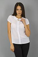 Офисная женская блузка (2 цвета)