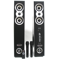 Активный компект домашней HI-FI акустики HI-END 300