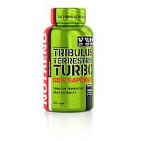 Tribulus Terrestris turbo 120 капс.