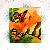 Наклейка на выключатель и розетку Бабочки