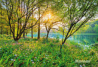 """Фотообои  """"Весеннее озеро"""" 368х254 см"""