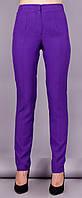 Каста. Классические брюки. Фиолетовый.(Р)., фото 1