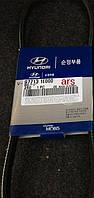 Ремень кондиционера поликлиновой (производство Hyundai-KIA ), код запчасти: 977131E000