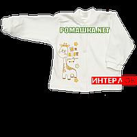 Детская кофточка р. 68 демисезонная ткань ИНТЕРЛОК 100% хлопок ТМ Алекс 3173 Бежевый