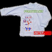 Детская кофточка р. 68  демисезонная ткань ИНТЕРЛОК 100% хлопок ТМ Алекс 3173 Голубой