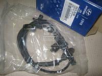 Датчик ABS передний левый Hyundai Santa Fe 07-09 (производство Hyundai-KIA ), код запчасти: 956702B100