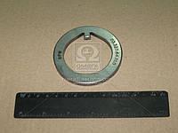 Шайба 53x76x5,8 ступицы стопорная (производство BPW ), код запчасти: 0332064010