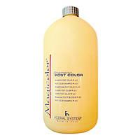 Post Color Shampoo 1000 ml Кислотный шампунь после окрашивания и химзавивки 1000 мл