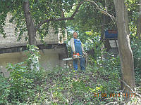 Удаление аварийных, старых деревьев