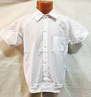 """Рубашка детская красивая (5 - 8 лет) РОЗН """"Indus-2"""" LM-825"""